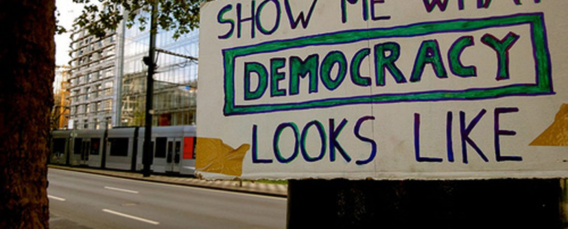 Webinar: Is This What Democracy Looks Like?