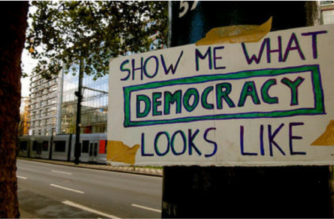 This Is What Democracy Looks Like >> Webinar Is This What Democracy Looks Like